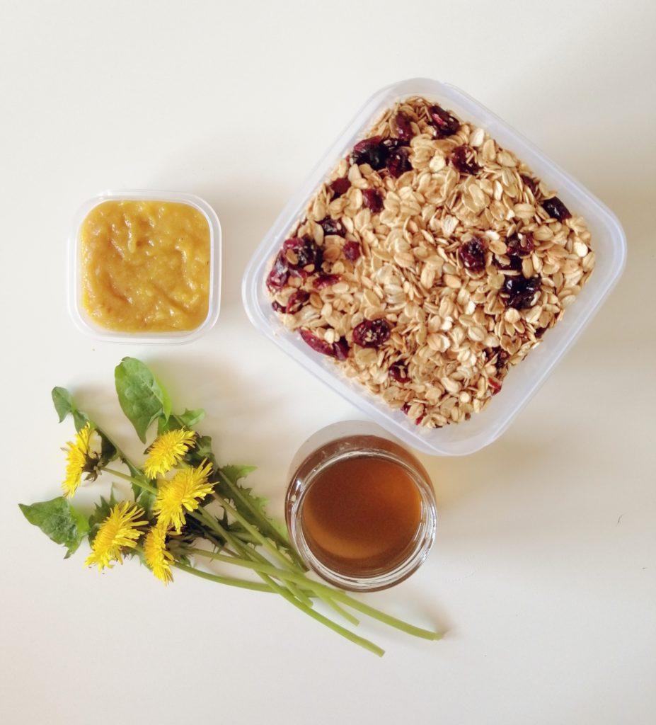 Med od maslačka i domaće granole