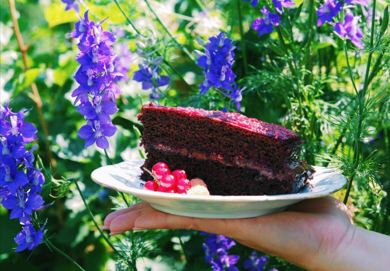 Super brza i super sočna čokoladna torta