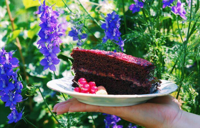 Super brza i super sočna torta od čokolade